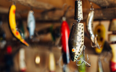 Want to Hook Investors? Do These 2 Things